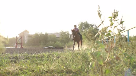 верхом : Teenage girl rides on a brown horse on a horse farm at sunset. Slow motion. Teenage girl galloping on a horse.
