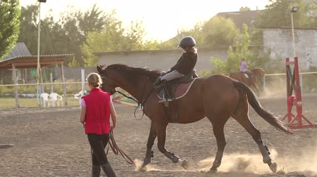 пони : Little girl riding a horse, learning and training in the riding school. Little girl learns riding with a trainer at ranch. Slow motion.