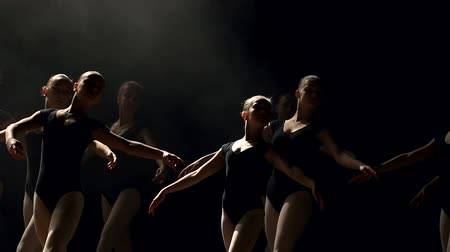 тапки : A group of young ballerina girls dancing on stage in the dark, close-up. A large group of children rehearsing and dancing the ballet.