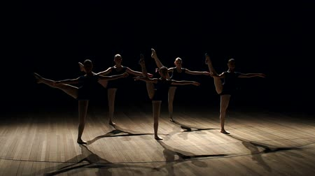 тапочка : Young teen girls perform ballet on stage in smoke on black background. A choreographed dance of a group of graceful pretty young ballerinas practicing on stage in a classical ballet school.