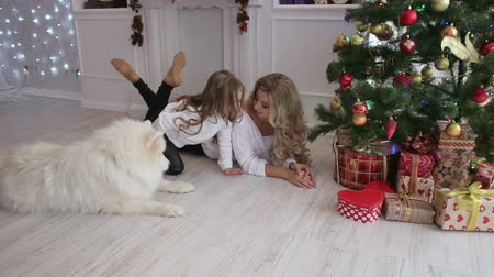 sitting floor : Lovely mother and child playing under a Christmas tree with a fluffy dog. Samoyed husky dog.