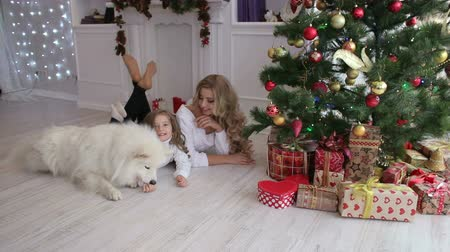 samoyed : Mom and daughter and big white fluffy dog near the decorated Christmas tree and boxes with gifts lying on the floor of the house. Portrait of a happy family with a dog near a Christmas tree.