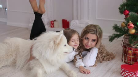 samoyed : Mother and daughter and a dog lying on the floor near the Christmas tree. Little girl hugging a dog with decorated Christmas tree in the background.