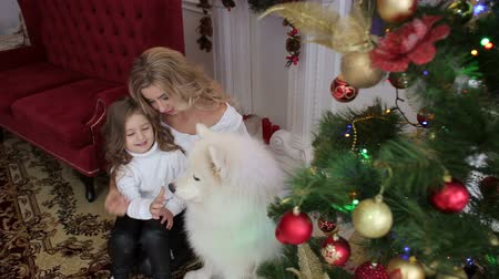samoyed : Mom and daughter and big white fluffy dog near the decorated Christmas tree and boxes with gifts sitting on the floor of the house. Portrait of a happy family with a dog near a Christmas tree.