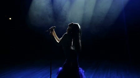 divas : Beautiful young female vocalist give a concert on a stage in the dark under the light of many searchlights.