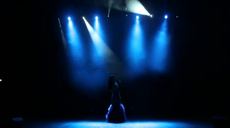 lanterna : Luxurious singer stands on stage in a long dress in the dark and holding a microphone stand. Wide shot.