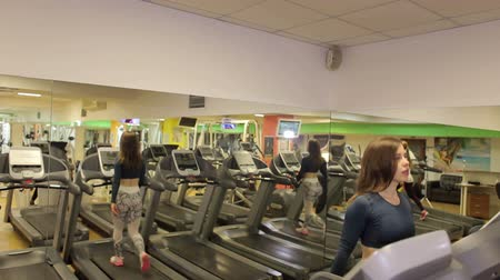 treadmill : Attractive young sports woman is working out in gym. Doing cardio training on treadmill. Running on treadmill.