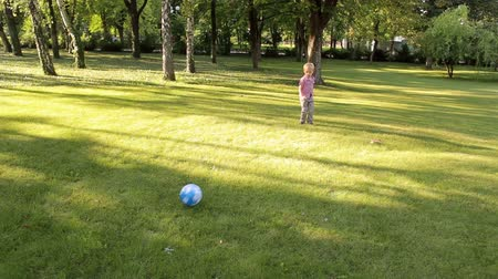 jogador de futebol : A little boy playing football in a Sunny Park on the green grass. Happy child running around with a ball on the grass. Stock Footage