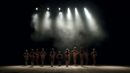 тапочка : A group of little kids dancers perform on stage in the dark, they do bow. Silhouette. Ballet. Scene. Its dark. Стоковые видеозаписи