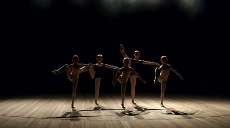 тапочка : Five ballerinas show a complex gymnastic exercise on stage in the dark, slow motion. Children are taught ballet positions in choreography.