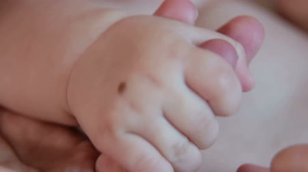 playful infant : Close-up of the hand of a newborn baby in the hand of the mother, mom is playing with the hands of a newborn baby. Birthmark on the hand of a newborn child. Stock Footage