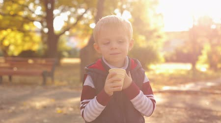 brilho intenso : Little cute 4 year old boy eating ice cream in autumn Park at sunset, close-up. Slow motion. Portrait of a child in the Golden autumn Park with ice cream.