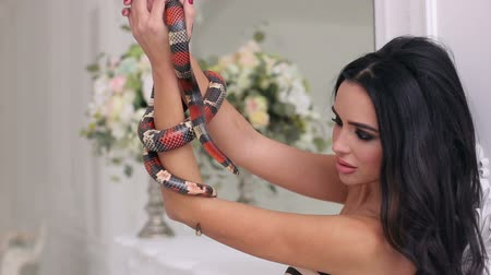 womanhood : Seductive girl in sexy dress with deep neckline posing in studio with snake. Portrait of a gorgeous girl with a snake in a bright Studio.