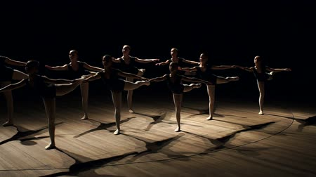 duruş : The magnificent slender ballerinas stood in a difficult position on the stage in the dark. A group of teenage girls studying ballet in a dance studio. Silhouette. Scene. Smoke.