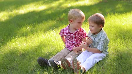 into the camera : Two cheerful little boys of 4 years old are sitting in the park on the grass. Two young children relax in the summer in nature. Stock Footage