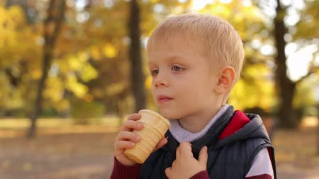 brilho : Little cute 4 year old boy eating ice cream in autumn Park at sunset, close-up. Slow motion. Portrait of a child in the Golden autumn Park with ice cream.