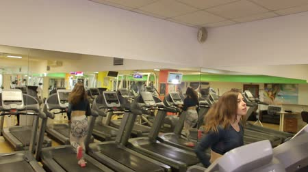 cardio workout : The girl runs on a treadmill in the gym, it is reflected in the mirrors. Concept for fitness, exercising and healthy lifestyle. Woman running on a treadmill in a fitness club.