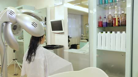 dryer : A young girl dries her hair in a hairdresser with a professional hair dryer. Portrait of a young woman in a Barber shop.