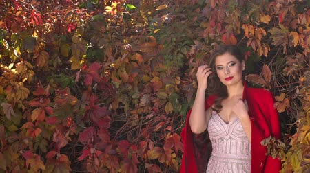 manteau de fourrure : Portrait of a gorgeous girl in a dress and a red coat and in an autumn Park on a background of red and yellow leaves. Vidéos Libres De Droits