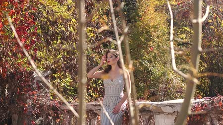 ruinas : A seductive young woman in a long silver dress stands on an old ruined balcony in an old mansion against the background of beautiful autumn nature. Model in a dress posing in the autumn Park. Archivo de Video
