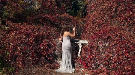 hajló : A beautiful girl in a long silver evening dress walks in an old abandoned park in the autumn, she stands on a ruined stone staircase that winds wild grapes with red leaves. Wide shot.