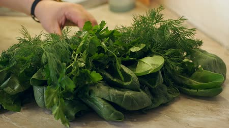 soğancık : Close-up girl puts on the table wet dill with parsley. Vegetarianism. Beautiful wet dill with parsley with water drops. Slow motion. Stok Video