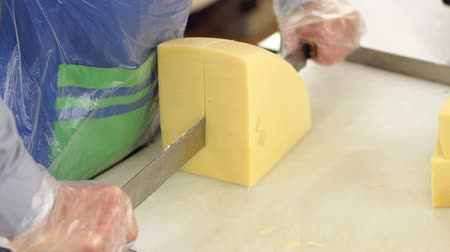 cálcio : Close-up of the clerk slices the cheese in the supermarket and put it in a individual packaging. Packaging and cutting cheese in the supermarket.