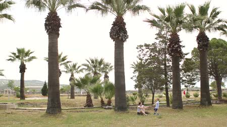 hugs : Mom is sitting on the ground in the Park near the big palms, to her running her little son. A little boy runs among the palm trees to his mother and hugs her. Slow motion. Wide shot. Stock Footage