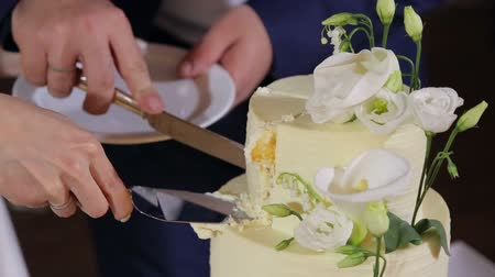 házasodik : Close-up of a bride and groom cutting their wedding cake. Newly married couple cutting their wedding cake. Stock mozgókép