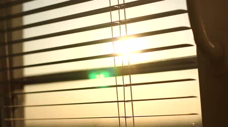 zonwering : Sunrise behind the window blinds and mosquito net. Rising sun behind window blinds. Sunlight behind vertical blinds. Stockvideo