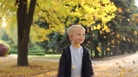 throws : A little blond boy throws up yellow leaves in an autumn park on a long alley among yellow trees. Slow motion.
