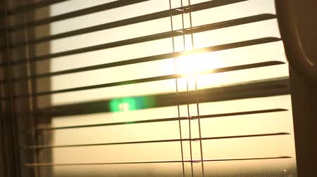 jalousie : Sunrise behind the window blinds and mosquito net. Rising sun behind window blinds. Sunlight behind vertical blinds. Stock Footage