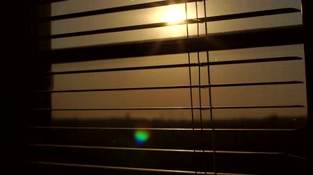 vitrage : Sunrise behind the window blinds and mosquito net. Rising sun behind window blinds. Sunlight behind vertical blinds. Stockvideo