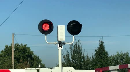 stoplight : Close-up of red flashing traffic lights at a railway crossing with a lowered barrier. Railroad crossing with barriers lowered and red lights flashing warning and announcing coming train on sunny day.