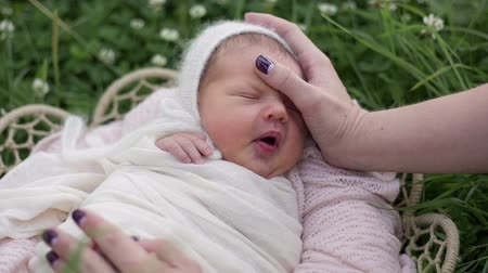 paternal : Mother cradles a newborn baby to sleep
