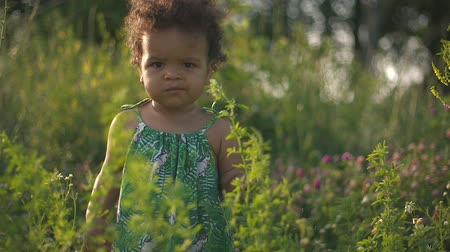 африканского происхождения : Handsome African-American child in the green grass on the nature