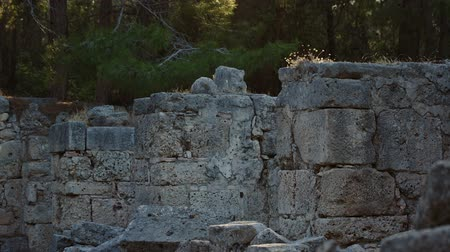 phaselis : Ruins of an Ancient Fortress at Sunset
