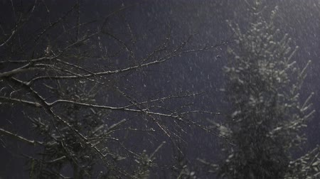 Snow falling in the light of the lantern Stock Footage