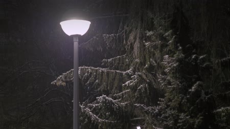 geada : Snow falling in the light of the lantern Stock Footage
