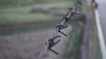 Barb wire fence close up Stock Footage