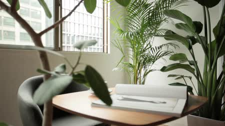 shaking wind : Room with desk, chair and houseplant Stock Footage