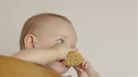 migalha : Little baby girl eating cookies Stock Footage