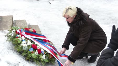 elite : Ukraine, March 9, 2018: Defense Minister of the Czech Republic Karla Schlechtova laying flowers at the monument. Stock Footage