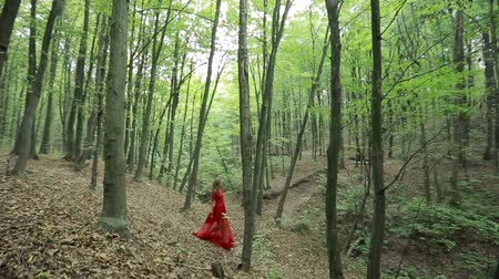 mese : Steadicam shot of a beautiful girl in red long dress walking in forest
