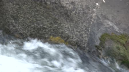 south tyrol : Video of a river at Caldes, South Tyrol, Italy.