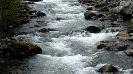 south tyrol : Fast motion video of a river at Caldes, South Tyrol, Italy. Stock Footage