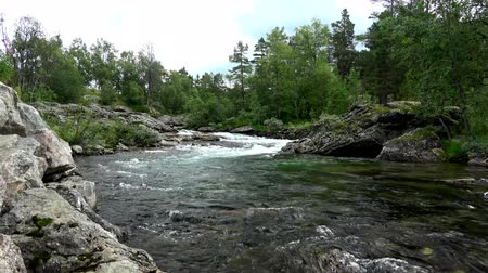 İskandinavya : River space near the town of Bjorli in Oppland, Norway. Stok Video