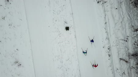 múltiplas : Training of skiers, top view of the GABO track, Moscow region Vídeos