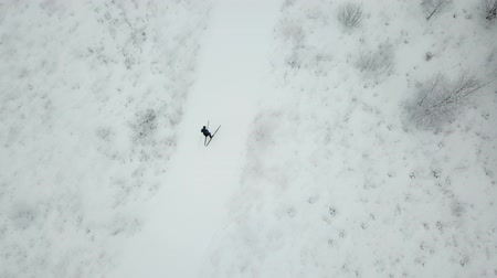 Training of skier. Moscow region. Aerial view