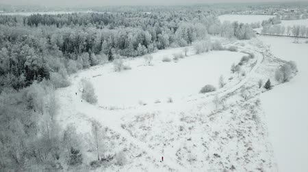 Flying over small pond on the river near Razderiha near winter forest. Aerial view landscape.